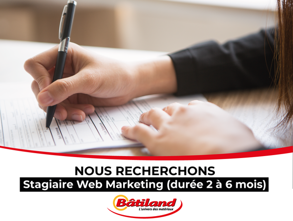 stagiaire-web